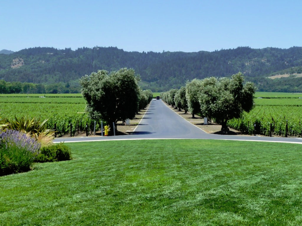 Opus One Winery, Sparkling Wine